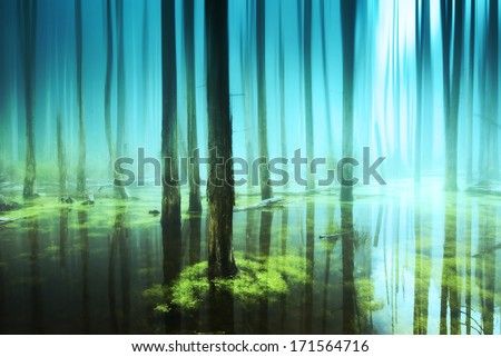 Tree root covered the entire floor - stock photo