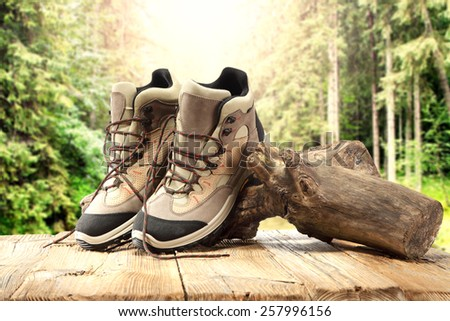 tree shoes table and forest  - stock photo