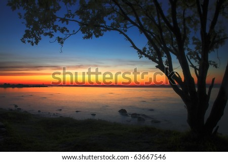 Tree silhouette and sunset at the Baltic Sea