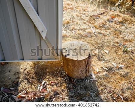 Tree stump door stopper - stock photo
