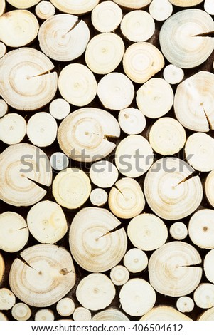 tree stumps background - stock photo