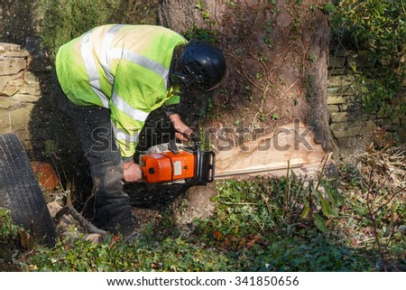 Tree surgeon cutting into a tree trunk with a large chainsaw.  The male worker is wearing full personal protective equipment for chainsaw safety.  Motion bur of sawdust and chippings - stock photo