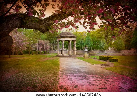 Tree surrounds lovely garden path covered in cherry blossom petals and gazebo - stock photo