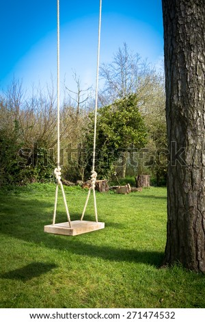 Tree swing in the garden with a tall tree, blue sky and green grass - stock photo