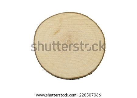Tree trunk cross section, isolated on white background. - stock photo