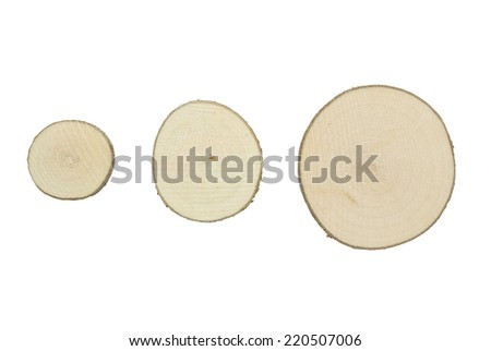 Tree trunk cross section, isolated on white background. Three different size tree trunk sections  - stock photo
