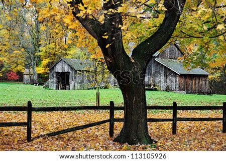 Tree Trunk, Fence And Barn, A Pastoral Autumn Scene, Sharon Woods, Southwestern Ohio, USA - stock photo