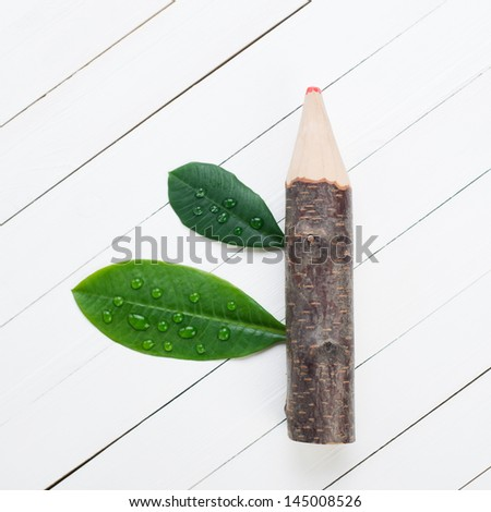 Tree trunk pencil with green leaves, view from above - stock photo