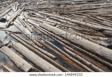 Tree trunks floating on a river creating a log jam
