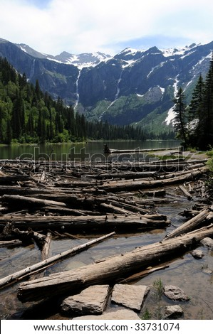 Tree trunks in the water and on shores of Avalanche Lake in the Glacier National Park in Montana, USA, with waterfalls formed by melting snow in the background. - stock photo