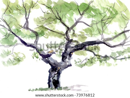 tree, watercolor - stock photo