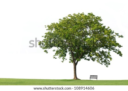 Tree with  bench and green grass isolated on the white backgrounds - stock photo