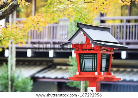Tree with Fall Colors in Japan  - stock photo
