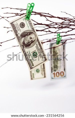 tree with paper money - dollars banknotes - stock photo