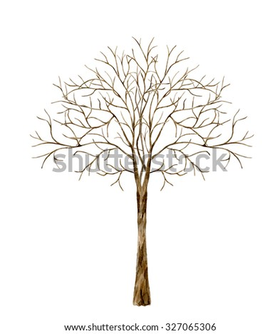 Tree without leaves. Watercolor illustration on a white background - stock photo