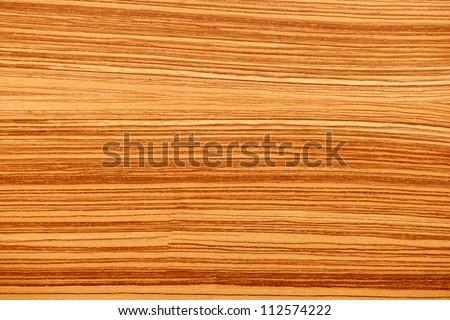 tree wood textures - stock photo