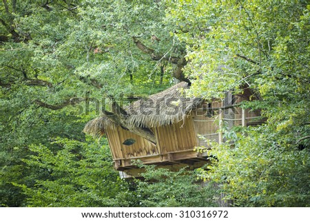 Treehouse hidden high in the trees looking out over the forest edge. - stock photo