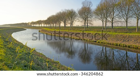 Trees along a canal at sunset in autumn