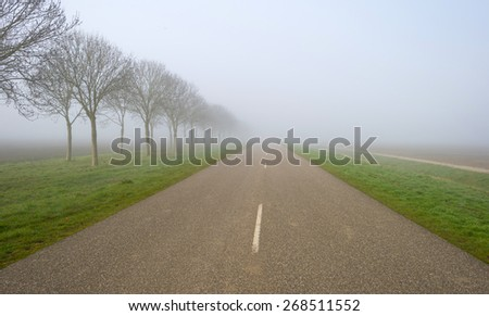 Trees along a foggy road in spring - stock photo