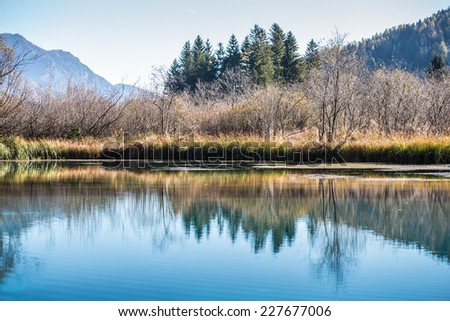 Trees and blue sky reflected in a tranquil lake with mountain backdrop for a scenic nature and wilderness background. - stock photo