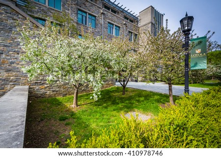 Trees and buildings at Loyola University Maryland, in Baltimore, Maryland. - stock photo
