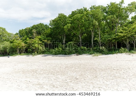 Trees and bushes grow on a sand dune at the Baltic Sea beach in Kolobrzeg in Poland - stock photo