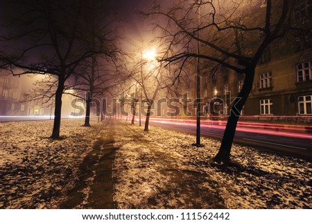 trees and city lights - stock photo