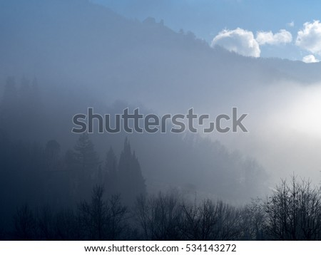 Trees and hill behind the fog