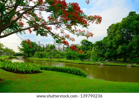 Trees and lawn near a small pond in Thailand - stock photo