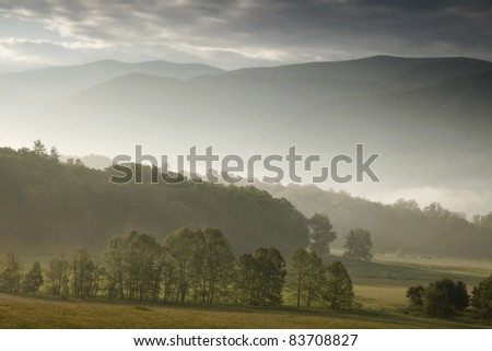 Trees and mist in a valley between mountains - stock photo