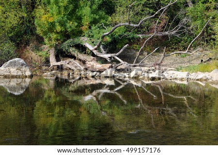 Trees and rocks and their reflection in the water of the Osam river in Bulgaria