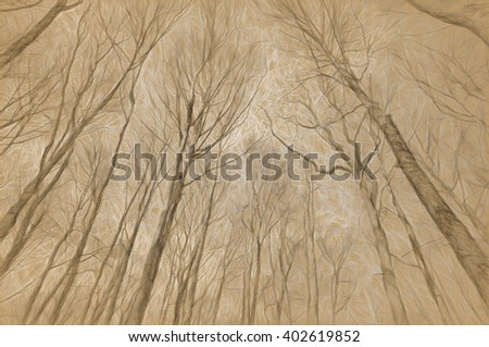 trees - antique style drawing - stock photo