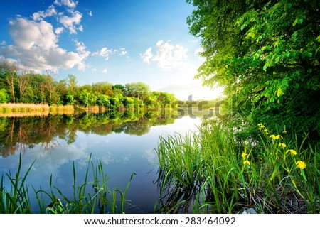 Trees by calm river in the morning - stock photo