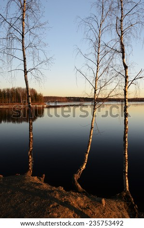 trees by lake at sunset in summer - stock photo