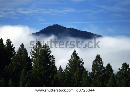 Trees, Clouds, and Mountains - stock photo