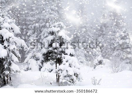 Trees covered with hoarfrost and snow and blue sky in mountains - Christmas background - stock photo