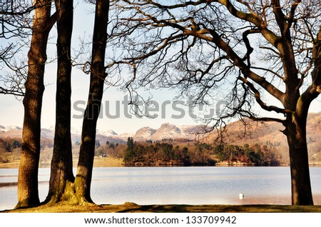 Trees framing Windermere and the Langdale Pikes - stock photo