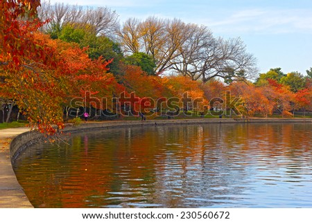 Trees in autumn foliage along Tidal Basin walkway, Washington DC. Colorful trees at peak of fall season and their reflections in Tidal Basin waters. - stock photo