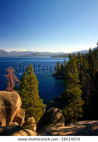 Trees in front of Lake Tahoe - stock photo