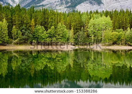 Trees mirrored in Wedge Pond, Kananaskis Country, Alberta, Canada.