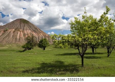 Trees near the old colliery in Gorlovka in Ukraine - stock photo