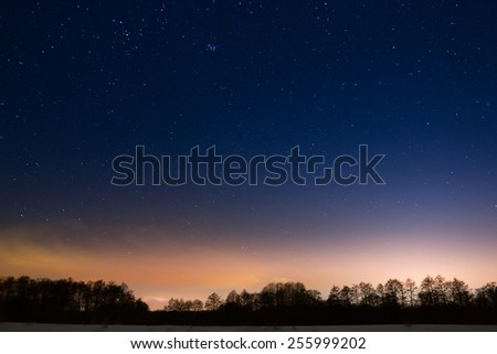 Trees on a background of the night starry sky - stock photo