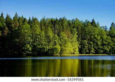 Trees on the lake shore, reflections in the water - stock photo