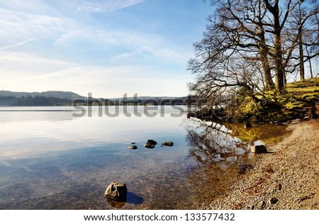 Trees on the shore of Lake Windermere - stock photo