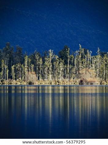 Trees reflect in the still water of Lake Brunner (Moana Kotuku, Heron Sea) on New Zealand's South Island