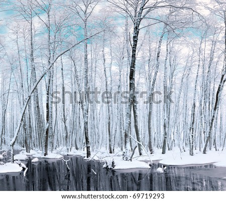 trees stand in water - stock photo