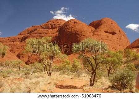 Trees with red rocks in Australia - Kata tjutas (Olgas) - stock photo