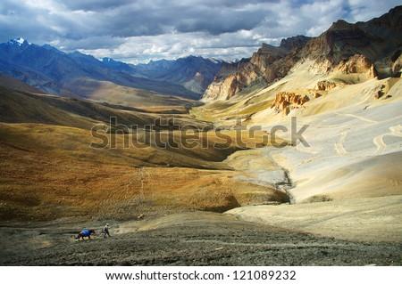 trek in the Himalayas, Ladakh, India - stock photo