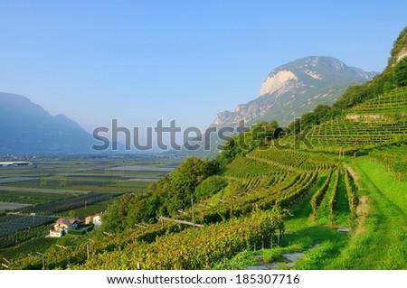 Trentino  - stock photo