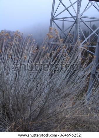 Trestle and Sagebrush  in Fog